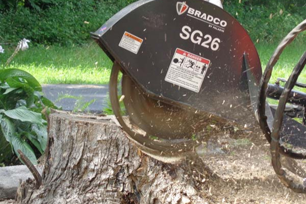 Paladin | Bradco | Stump Grinder for sale at Grower's Equipment, South Florida