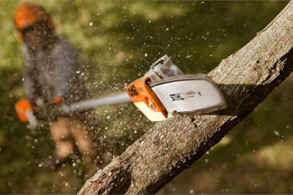Stihl | Pole Pruners | Homeowner Pole Pruners for sale at Grower's Equipment, South Florida