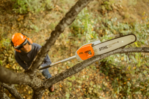 Stihl | Pole Pruners | Pole Pruner Accessories  for sale at Grower's Equipment, South Florida