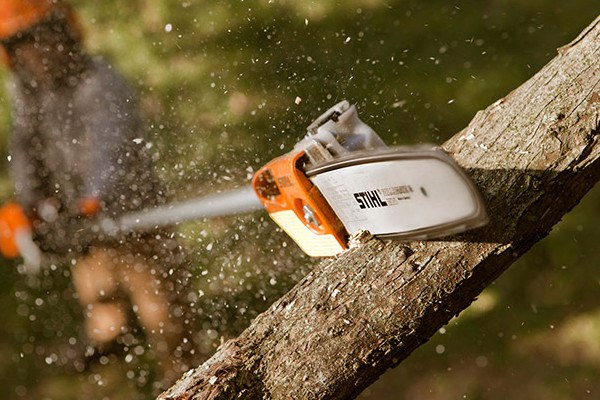 Stihl | Pole Pruners | Professional Pole Pruners for sale at Grower's Equipment, South Florida
