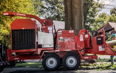 Tree Care / Chippers | Model EEGER BEEVER™ 2131 BRUSH CHIPPER for sale at Grower's Equipment, South Florida