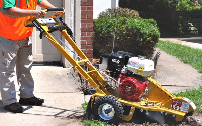 Tree Care / Chippers | Model MINI WORK-FORCE - RG13 SERIES II STUMP CUTTER for sale at Grower's Equipment, South Florida
